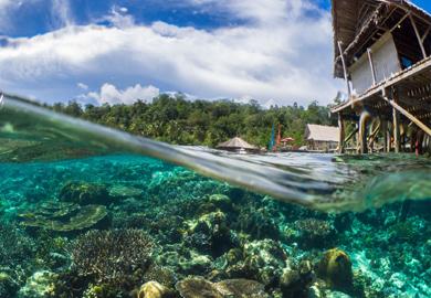 Indonesia liveaboards