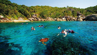 SIMILAN ISLANDS: A DIVER'S PARADISE AND BEYOND